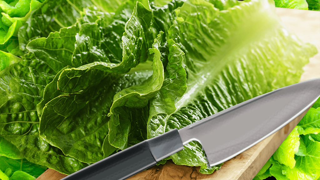 How to Cut Lettuce for Salad and Wraps with the Knife