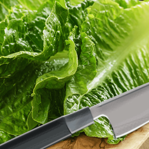How to Cut Lettuce for Salad and Wraps with the Knife (Lettuce Recipe)