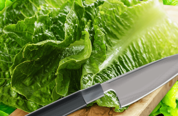 "How to Cut Lettuce for Salad and Wraps with the Knife (Lettuce Recipe)<span class=""rmp-archive-results-widget ""><i class="" rmp-icon rmp-icon--ratings rmp-icon--star rmp-icon--full-highlight""></i><i class="" rmp-icon rmp-icon--ratings rmp-icon--star rmp-icon--full-highlight""></i><i class="" rmp-icon rmp-icon--ratings rmp-icon--star rmp-icon--full-highlight""></i><i class="" rmp-icon rmp-icon--ratings rmp-icon--star rmp-icon--full-highlight""></i><i class="" rmp-icon rmp-icon--ratings rmp-icon--star rmp-icon--full-highlight""></i> <span>5 (1)</span></span>"