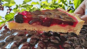 Black Cherry Tart (Fruit Tart Recipe)