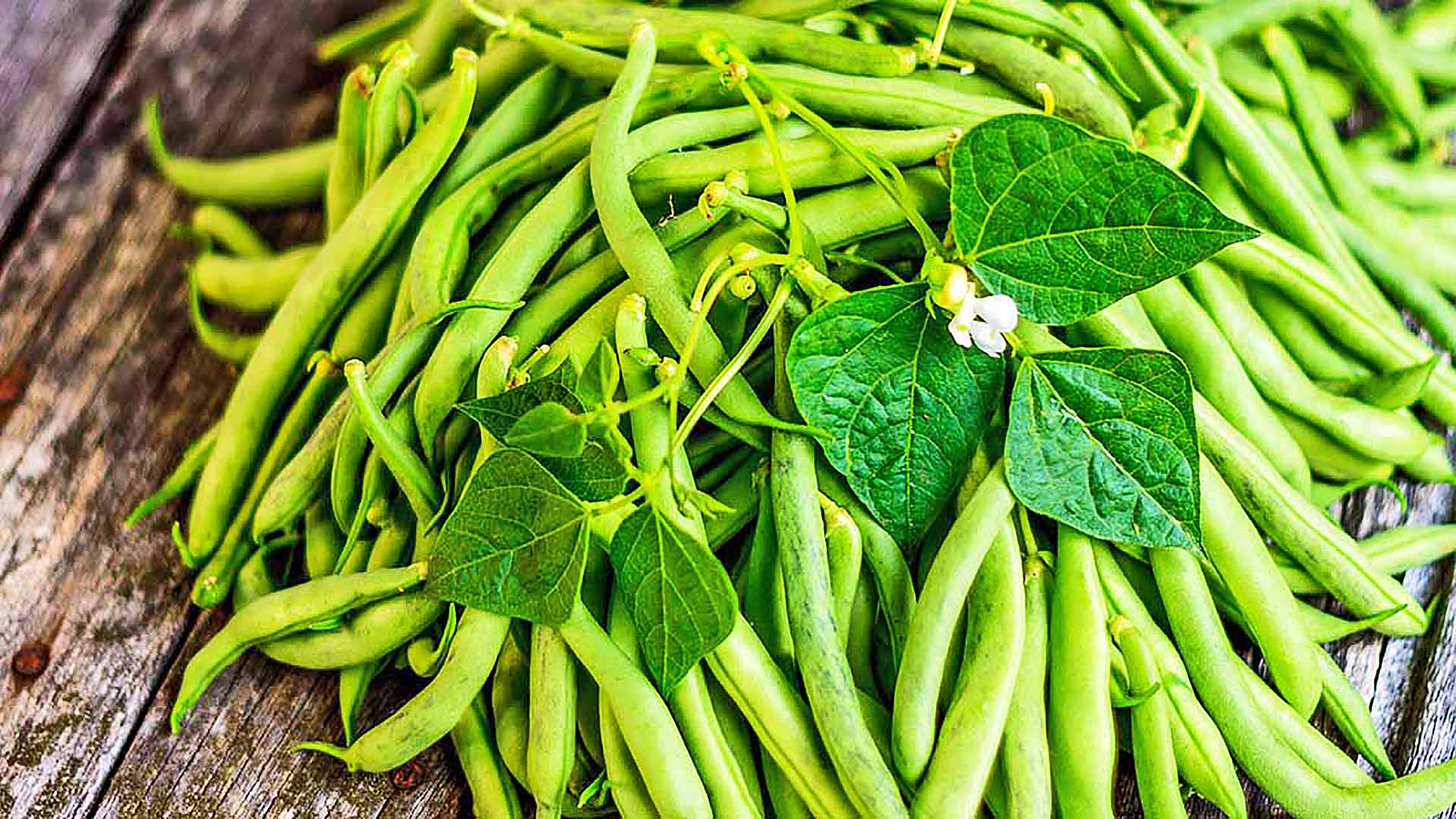 String Beans for Cooking Classic Green Bean Casserole